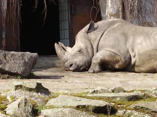 Zoo Ostrava © Imotes